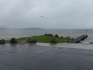 stürmisches Seeufer